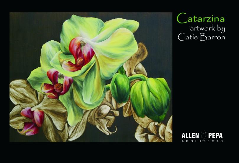 CatieBarronPostcard