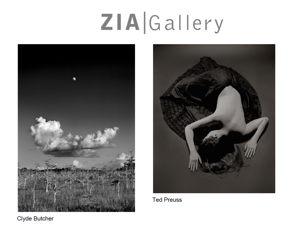 Clyde Butcher and Ted Preuss to Exhibit at ZIA Gallery