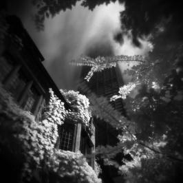 juxtaposition_ryansynovec