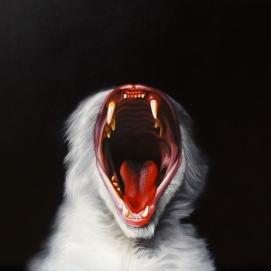 """""""Yawn"""" by Karl Jahnke"""
